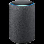 Amazon Echo Plus 2 skins