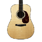 Fender FAA Acoustic Guitar skins