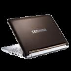 Toshiba Mini NB 305 skins